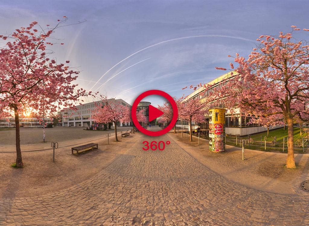 360 Grad Panoramafoto Kirschblüte Göttingen Campus