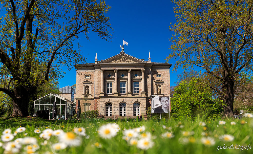 Gänseblümchen vor dem Deutschen Theater Göttingen