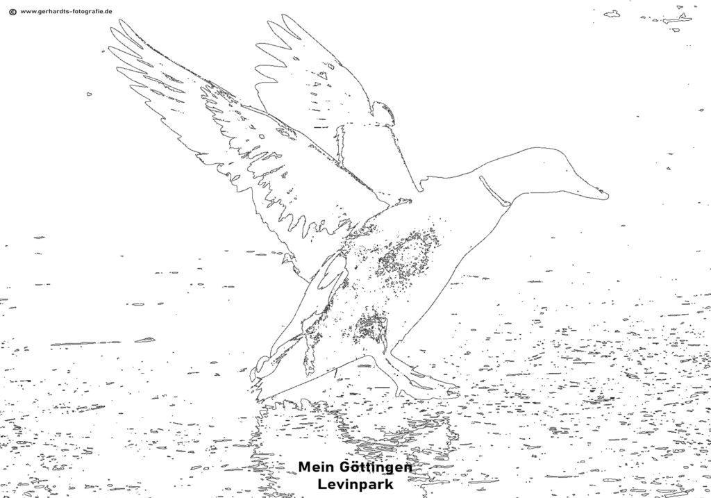 Ausmalbild Göttingen - gerhardts fotografie